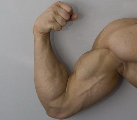 Как руки сделать сильнее 559